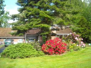 Learn energy healing near Portland, OR