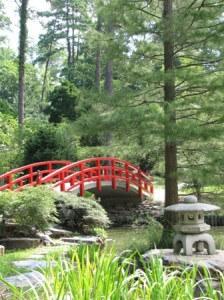 Reiki is the bridge to a happier life